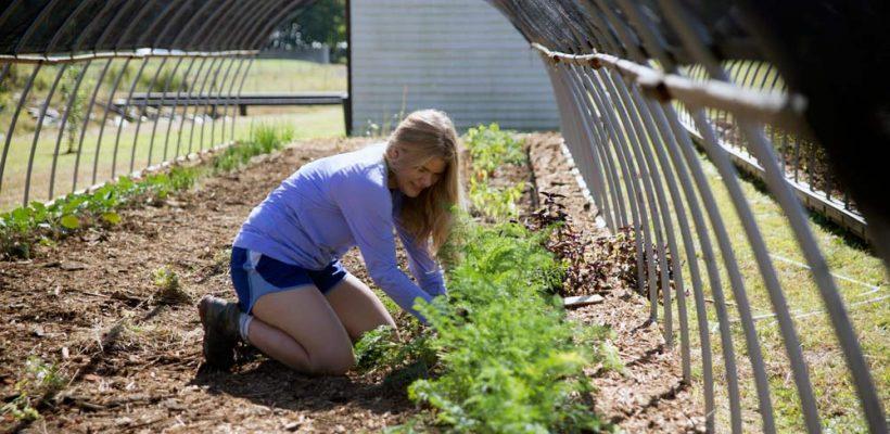 sustainable community development